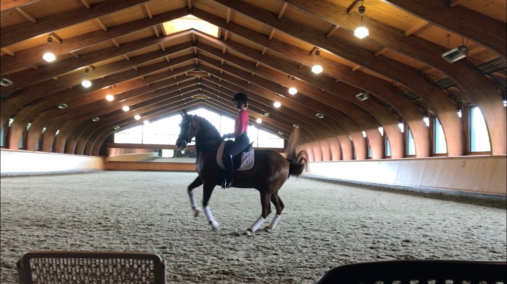 Emily Gill riding dressage