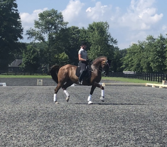 Training dressage with Emily Gill