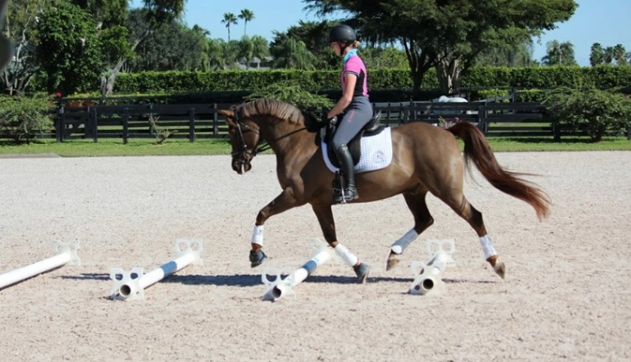 Emily Gill training dressage